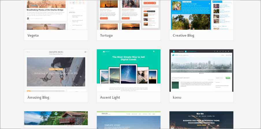 Finding the perfect theme for your WordPress site