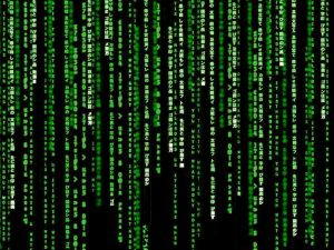 The Matrix of What About WordPress