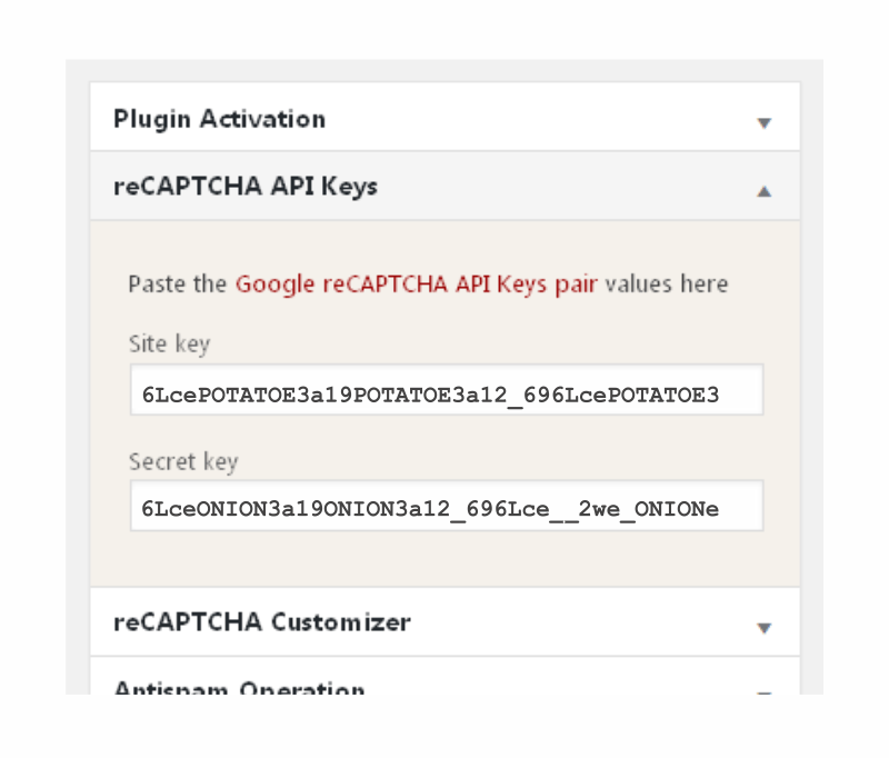 reCAPTCHA in WP comments form plugin: Plugin Settings Page